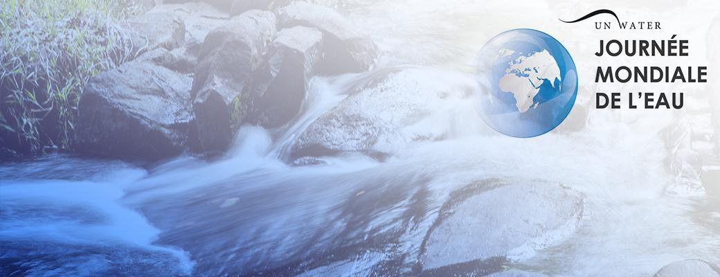 Visuel de Journée Mondiale de l'eau