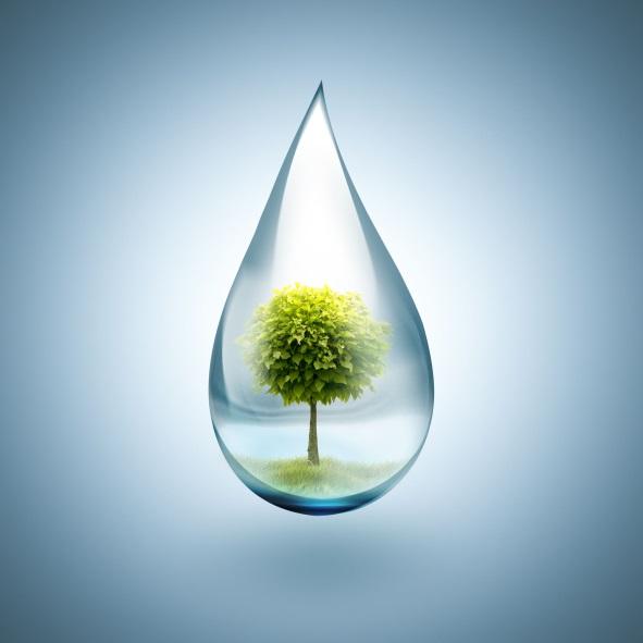 eau-photo2