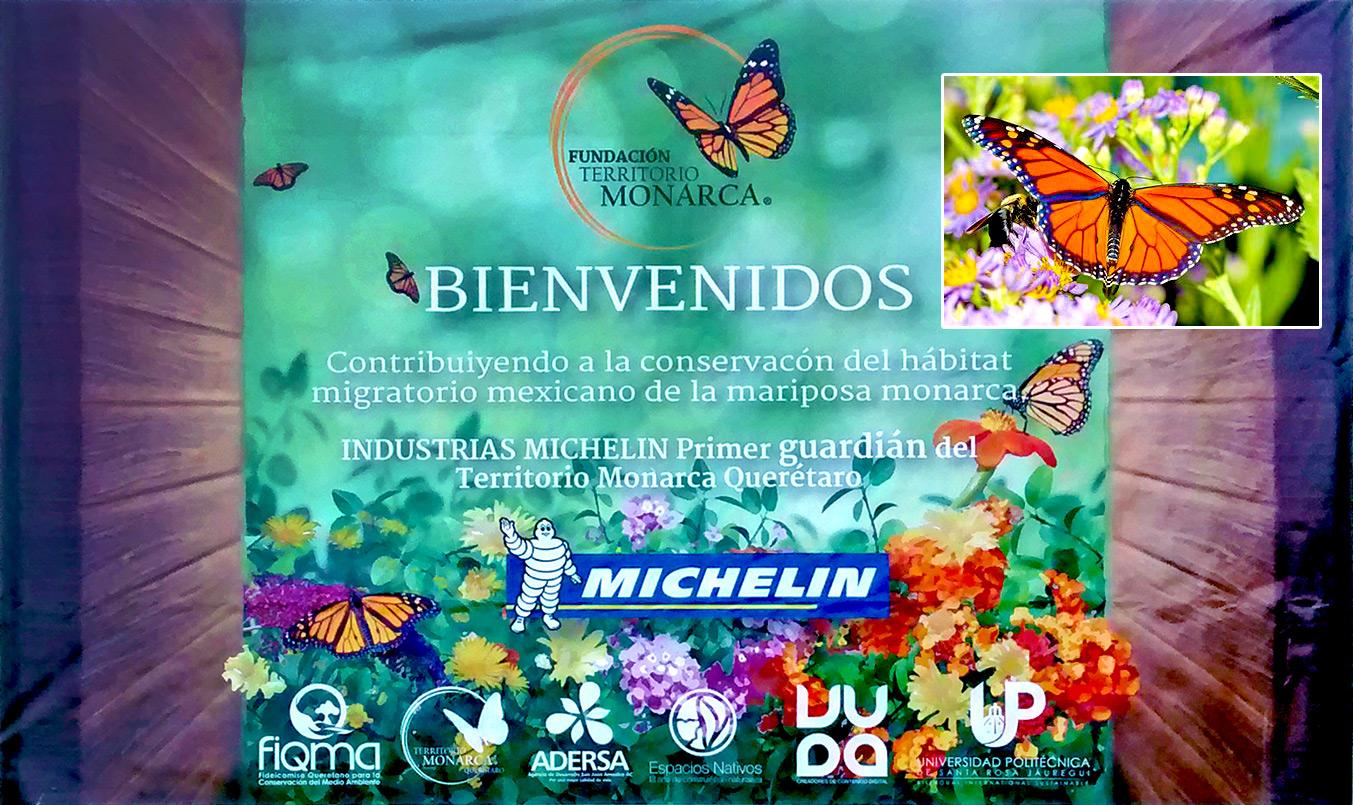 actu_biodiversite_mexique1_1353x805
